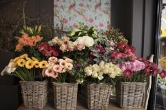 mooi-groen-bloemen-impressie